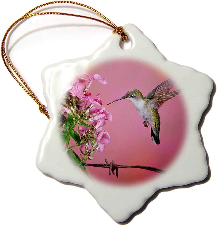 VinMea Ruby Throated Hummingbird Female at Garden Phlox Snowflake Ornament, Christmas Ornament Keepsake