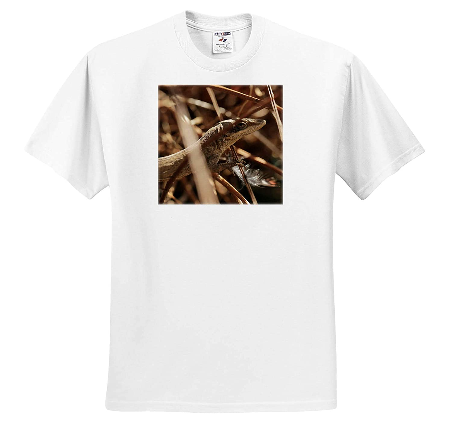 3dRose Stamp City - T-Shirts Animals Close up Photo of a Green Anole camouflaging in Dried Ferns