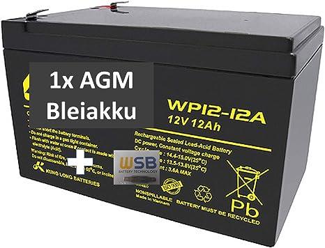 Batería de Gel de Plomo para cortacésped Remco RM12-12D de WSB, 12 V, 12 Ah, tecnología AGM, para Jeep, Peg-Perego, John Deere, Gator, HPX NP12-12, Vision 6-FM-12, 6-DZM-12, Robomow RM200: Amazon.es: Deportes