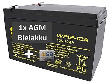 Batería de Gel de Plomo para cortacésped Remco RM12-12D de WSB, 12 ...