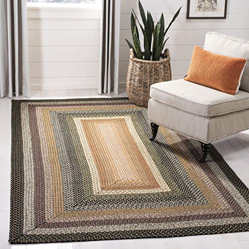 (Safavieh BRD308A-2 Braided Collection Multicolored Area Rug, 2' x 3',)