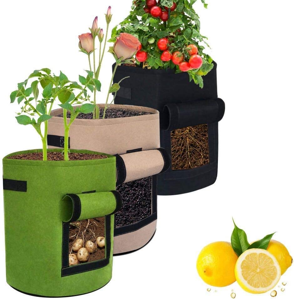 3Pack 10 Gallon Strawberry Grow Bags , HAWTHOR Grow Bags for Tomatoes, Planting Fabric Pots with Handles and Flap, Garden Bags for Potato,Vegetables, Carrots, Onions