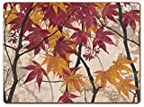 Cala Home 4 Premium Hardboard Placemats Table Mats, Maple Story