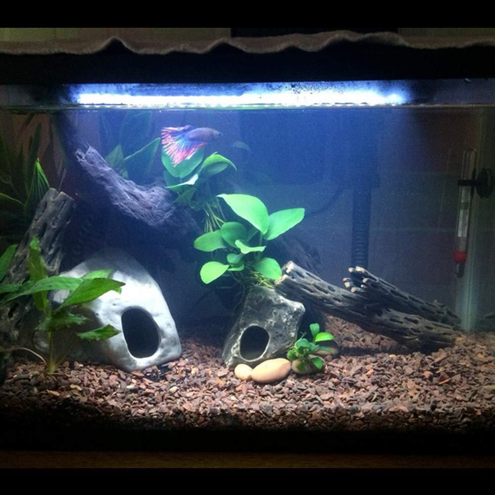 Mingdak Lámpara LED de acuario sumergible - Lámpara de cristal - para los peces de mar y de agua dulce: Amazon.es: Productos para mascotas