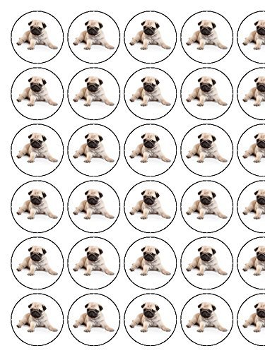 Pug-Puppy-Dog-Laying-Down-30-x-13-Icing-cupcake-toppers-PRECUT-Ready-to-use-5-10-BUSINESS-DAYS-DELIVERY-FROM-UK
