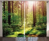 Ambesonne Farm House Decor Curtains 2 Panel Set, Forest Spring Time Sunset Moss Woods Leaf Wilderness Fantasy Magical View, Living Room Bedroom Decor, 108 W X 90 L Inches, Green Brown