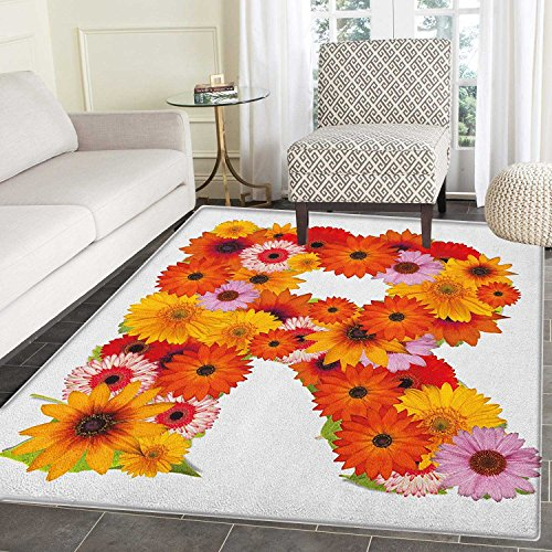 Letter R Area Silky Smooth Rugs Gerbera Daisies Abloom in R Symbol Shape Summer Time Flowers Spring Bouquet Print Floor Mat Pattern 2'x3' Multicolor (2 Spring Bouquet)