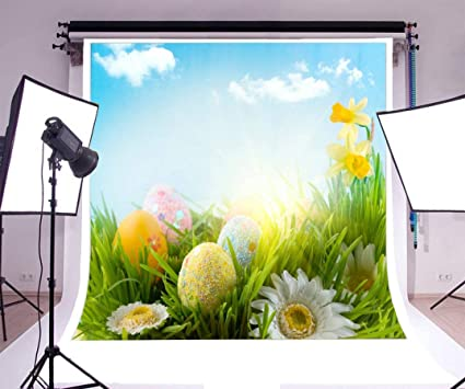 Vrupi 6x6ft Vinyl Fotografie Hintergrund Frohe Ostern Bemalte Eier Blühende Frische Blumen Grünes Gras Feld Blauer