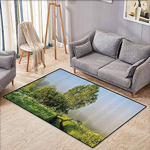 Kids Rug,Nature Decor,Beautiful Serenity Trees Track Path Garden Leaves and Grass Sunny Skies Photography,Super Absorbs Mud,4'7
