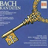 Bach: Cantatas, Nos 31, 66 & 106