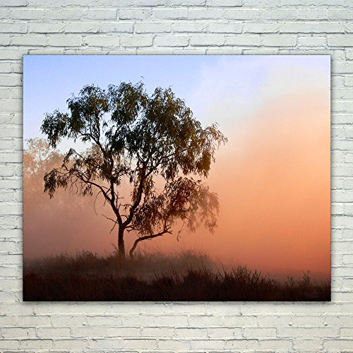 Westlake Art Poster Print Wall Art - Tree Sky - Modern Picture Photography Home Decor Office Birthday Gift - Unframed - 4x5in