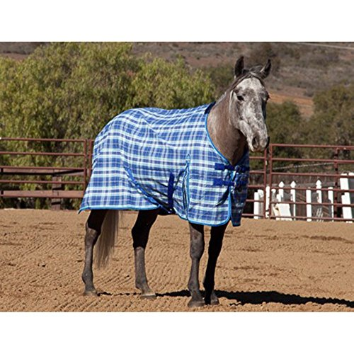 Kensington All Around Cotton Stable Sheet, Navy Plaid, Size 72