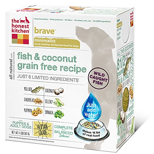 The Honest Kitchen Brave: Fish And Coconut Grain Free Dog