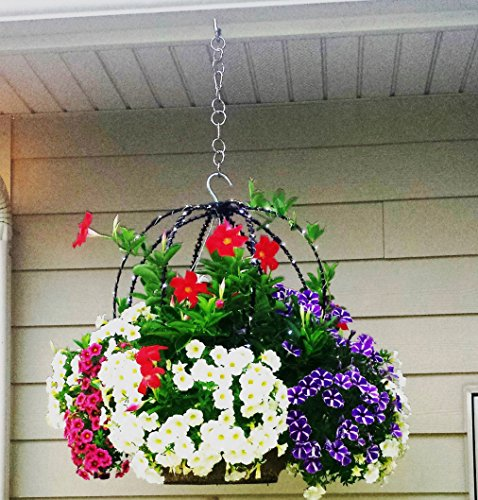 Scroll Trellis The only Topiary frame that you add to hanging baskets to create height and to support vines or solar lights (1, Black with (1 Light Wire Frame)