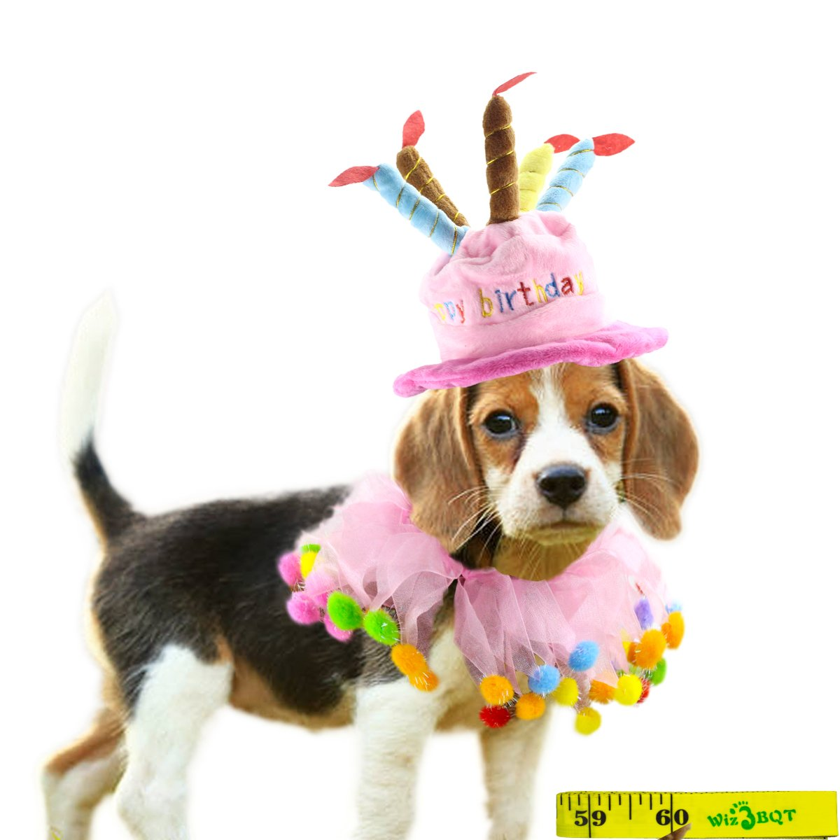 Amazon Wiz BBQT Pink Pet Dog Cat Happy Birthday Party Hat And Pom Collar For Small Medium Dogs Cats Pets A Supplies