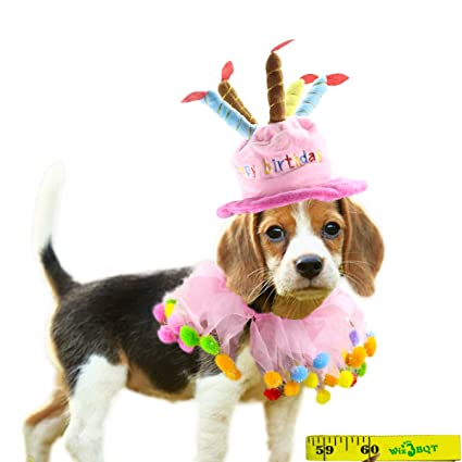 Wiz BBQT Pink Pet Dog Cat Happy Birthday Party Hat And Pom Collar For Small