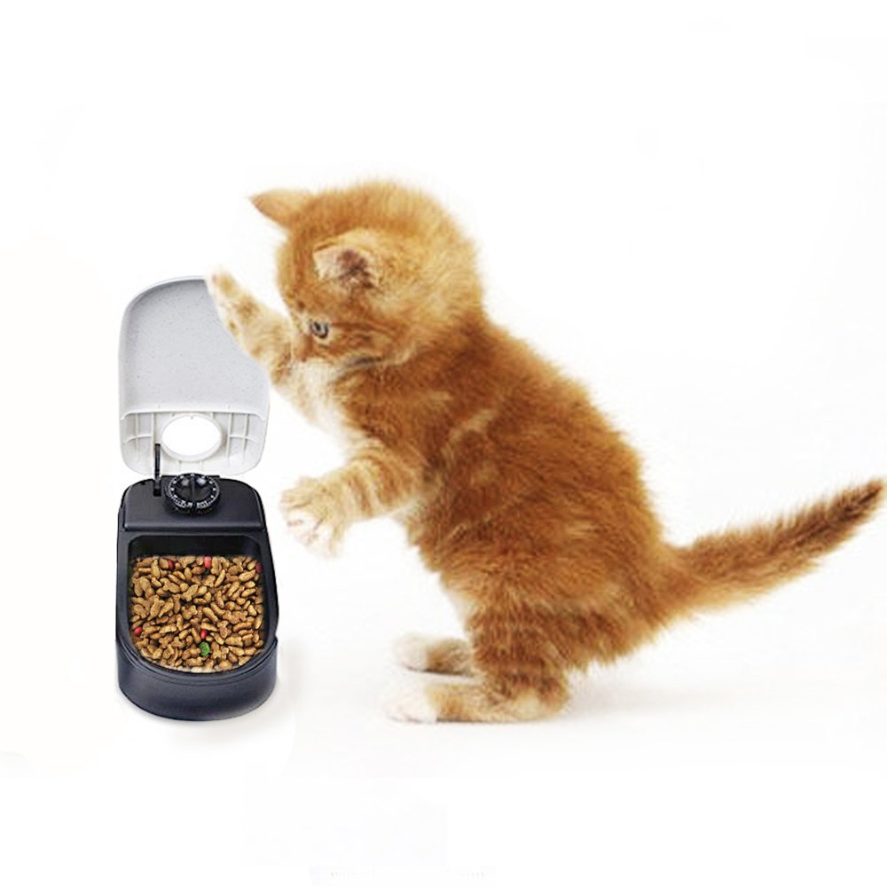 cat timer dispenser feeder feedster pf must read review usa food pet