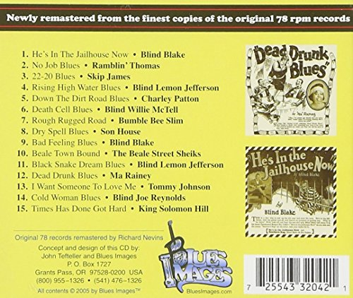 15 Classic Blues Songs from the 1920's, Vol  1: Down the Dirt