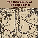 The Adventures of Paddy Beaver | Thornton W Burgess