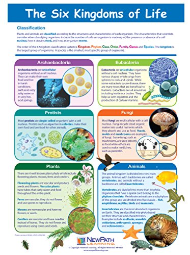 Six Kingdoms of Life Visual Learning Guides, Set/5 - 4-Panel, 11