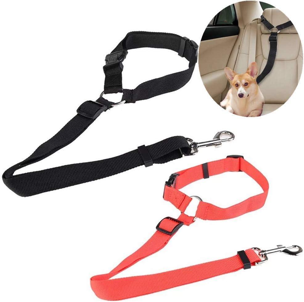 Lot de 2 ceintures de s/écurit/é r/églables pour chien et chat