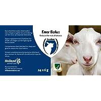 Holland Animal Care Ener Bolus für Schafe und Ziegen | 24 x 6 g | zur verminderung der Ketose Gefahr