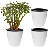 Evelots 3 Pack of Self Watering Planters,Small Or Large,White Flower Pots, Large