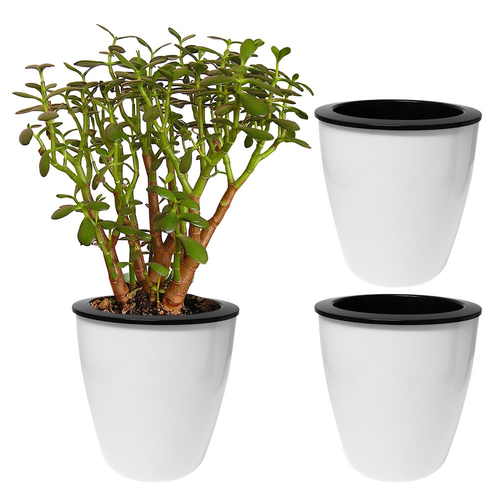 Amazon Evelots 3 Pack Of Self Watering Planters Small Or
