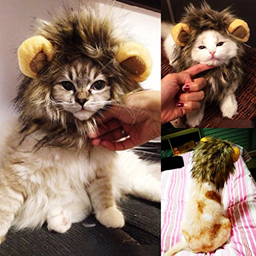 Kangkang@ Lion Mane Pet Wig for Cat Dog Pets Costume Party Halloween Christmas Dress up costume gatto natale (Gatto Halloween)