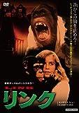 リンク [DVD]