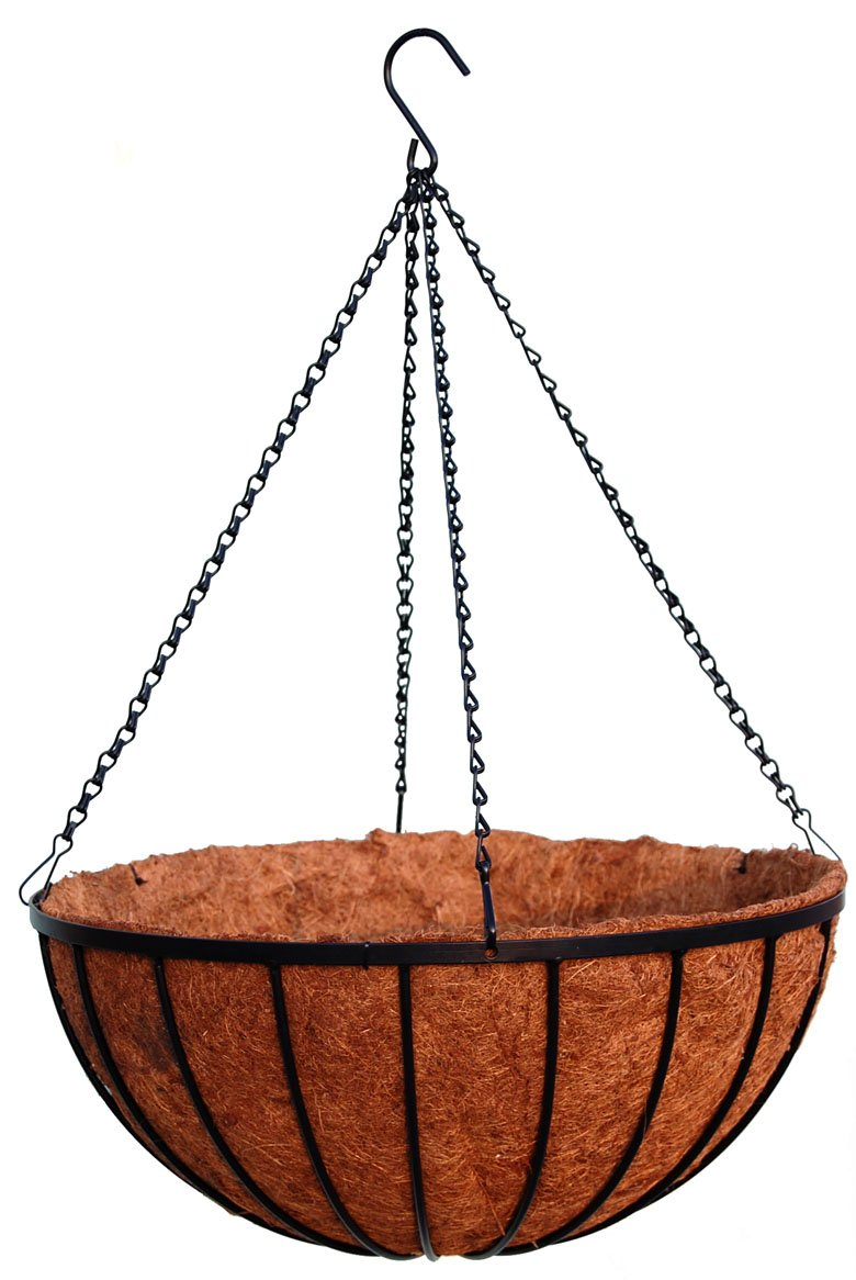 18'' Georgian Rigid Iron Hanging Basket (C93010) with Coco Moss Liner (Set of 10) by Topiary Art Works