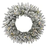 Vickerman Frosted Sable Pine Wreath with Iridescent Glitter, 135 Frosted PE/PVC Tips & 50 Italian LED Lights on Green Wire, 24'', Warm White