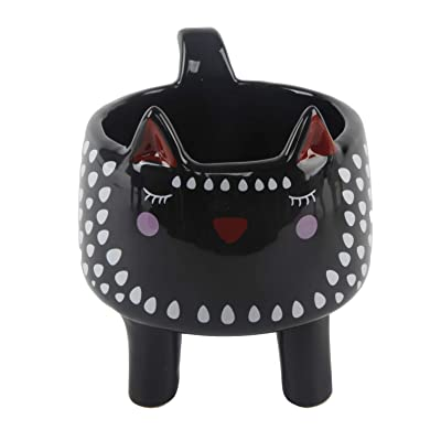 Flora Bunda Cute Animal Novelty Succulent Planter 4.5 Inch Black Cat Ceramic Planter, Cat,Black/Red: Home & Kitchen