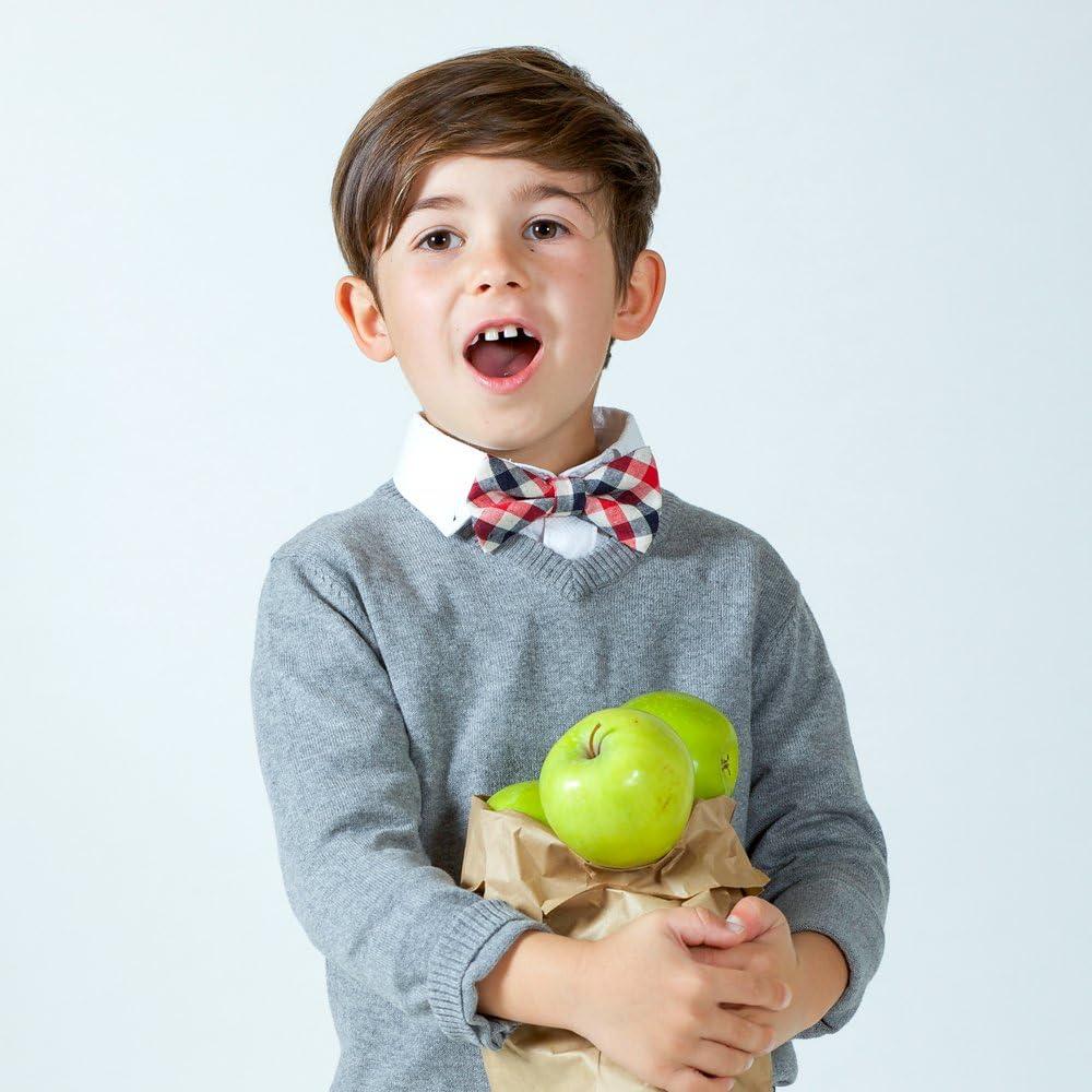 2-6y Peppercorn Kids Boys Classic Gingham Bow Tie-Amethyst-Sm