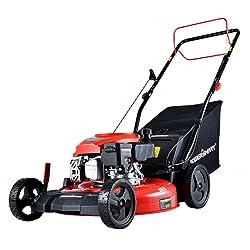 PowerSmart DB2194SR-A Lawn Mower, 21-Inch & 1700 CC
