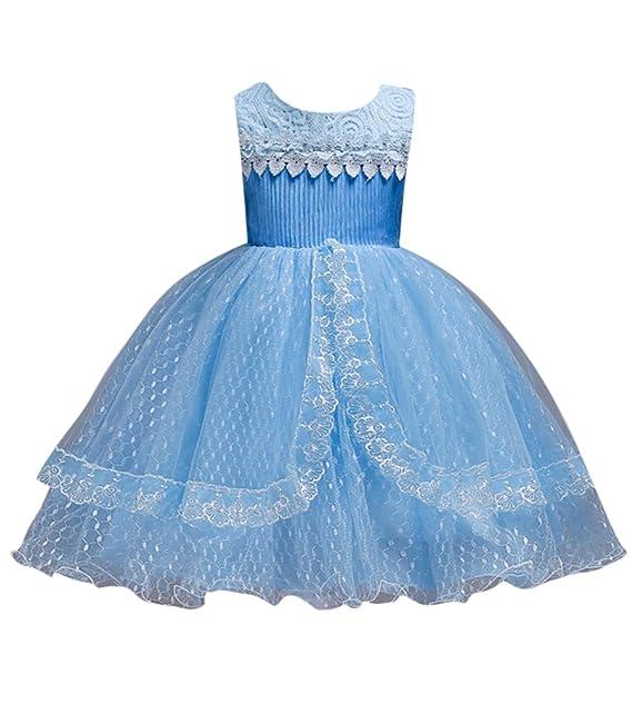 GUOCU Niñas Vestido de Fiesta de Princesa Encaje Sin Mangas Cuello Redondo Elegante Dama de Honor Tutú Vestido de Tul Longitud de La Rodilla 1-14 Años: ...