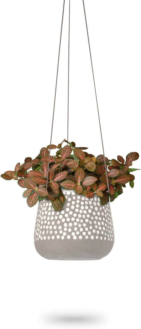 Hanging Planter for Indoor Plants, White Concrete Pots, Round Air Succulent Holder Container, Cactus Pot with Rope Hanger, 23 Bees (1, Shades of Nature (Tan))