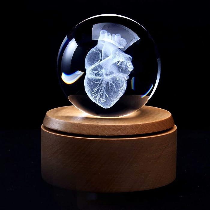 The Best Human Heart Decor