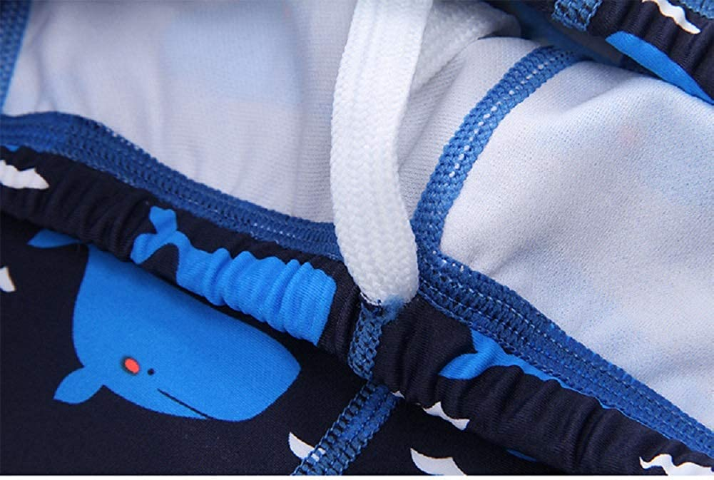 AMIYAN Kids Boys Cartoon Swimwear Toddler 2 Piece Long Sleeve UV Protective Bathing Suit Rashguard