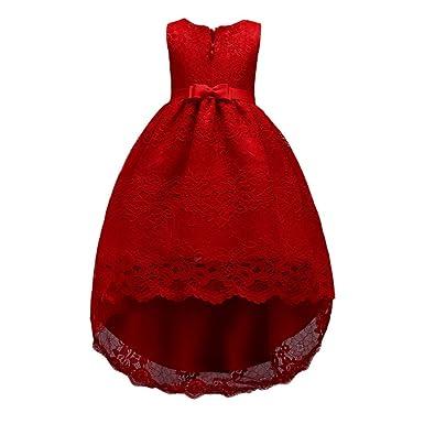Hongyuangl Niñas Vestido de Princesas de Encaje para Fiestas Boda Dama de Honor: Amazon.es: Ropa y accesorios