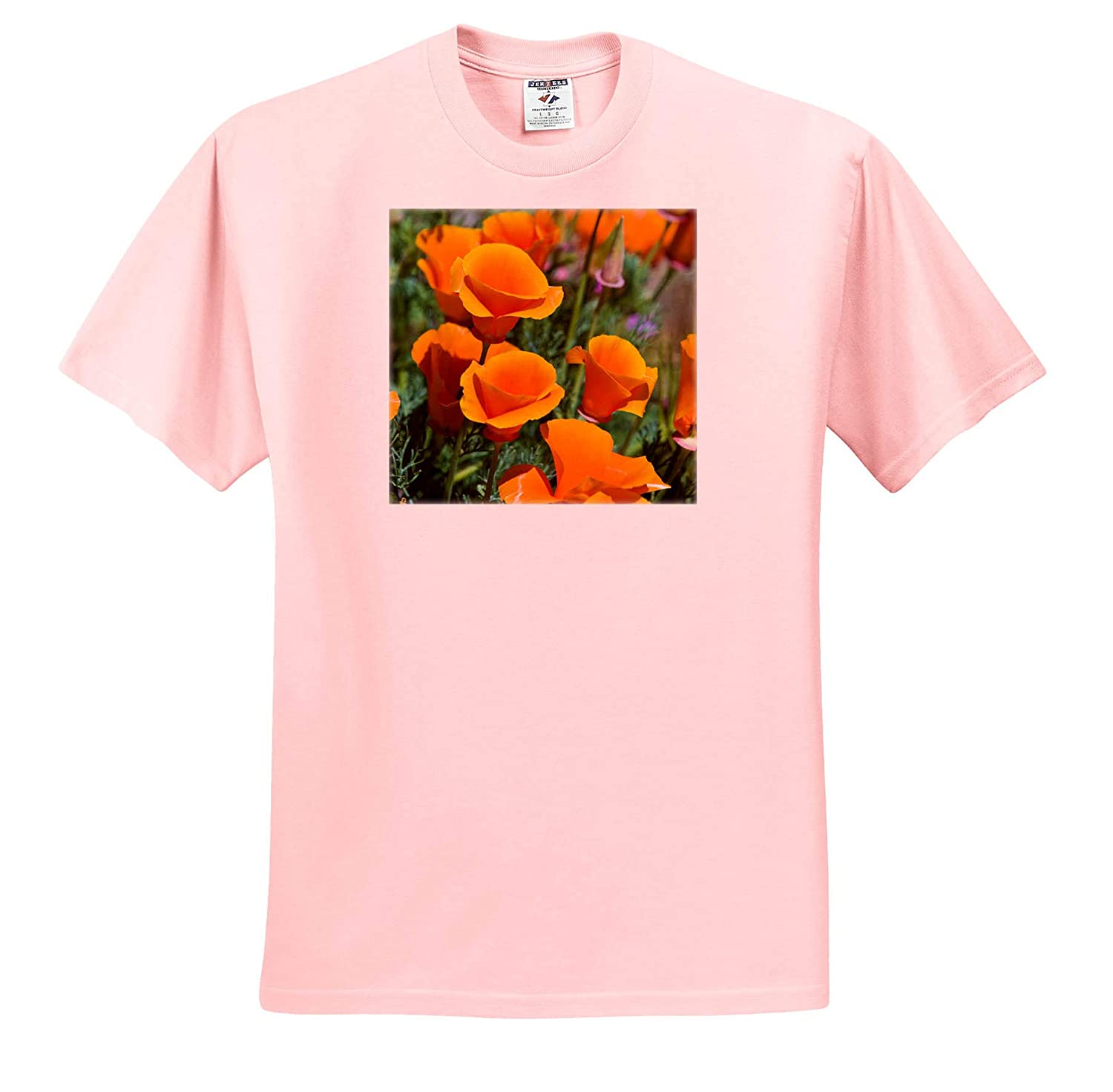 Adult T-Shirt XL 3dRose Danita Delimont Antelope Valley ts/_314711 California Poppy USA California Poppies