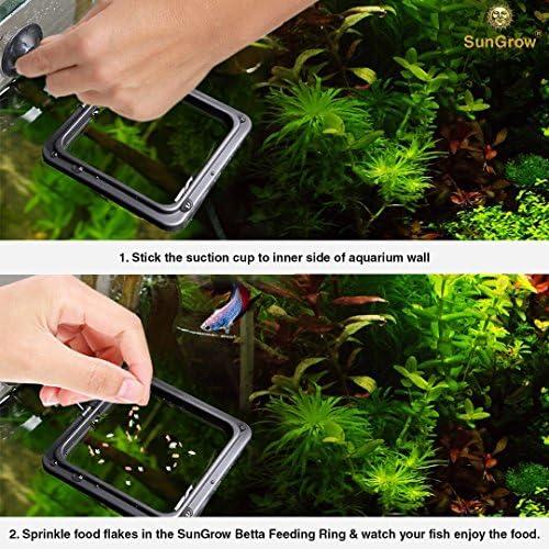 Anillo de alimentación Betta práctico cuadrado flotante para alimentos peces dorados y otros peces más pequeños 4
