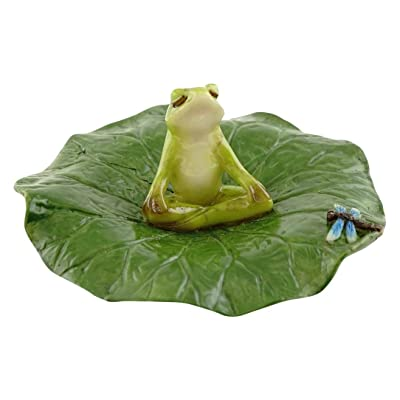 Top Collection Miniature Fairy Garden and Terrarium Frog Meditating on Lotus Leaf with Dragonfly Figurine: Garden & Outdoor
