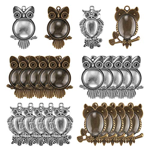 (Accmor 20 Pcs Owl Pendant Trays with 20 Pcs Glass Cabochon Clear Dome, Different Shape Pendant Blank bezels for Jewelry Making, Totally 40 Pcs)