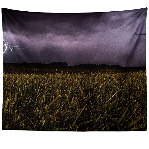 Westlake Art Wall Hanging Tapestry   Cloud Grass   Photography Home Decor Living Room   26X36in