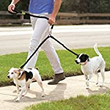 Double Dog Leash - Double Dog Leash Reflective Bungee No Tangle Walking Training Leash with Padded Handle for 2 Large Dogs