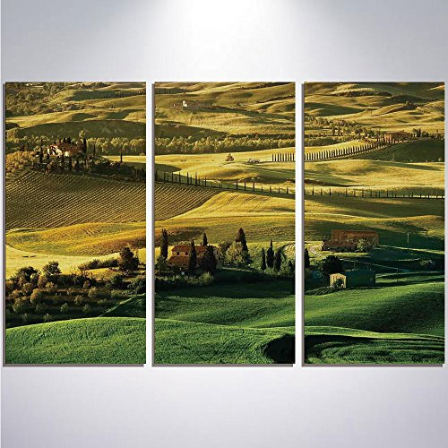 3 Pieces Modern Painting Canvas Prints Wall Art For Home Decoration Tuscan Print On Canvas Giclee Artwork For Wall DecorPeaceful Landscape of Pienza Tuscany Vineyard Trees Meadow Hill Ancient (Vineyard Hill Collection)