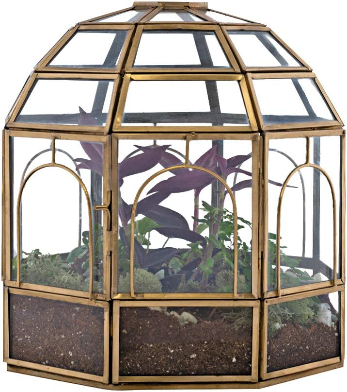 Urban Born Steel Glass Large Birdcage Terrarium | Air Plant & Flower Holder with Hinged Door | Perfect for Desert & Forest Succulent Fits Home, Garden or Office