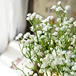 10pc Artificial Baby Breath Gypsophila Flower Wedding Home Decor Gift (white)