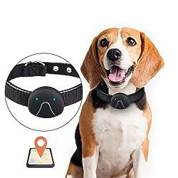 W-Pet Collier GPS Chat Divers Modes De Travail GPS Chien Collier avec Application Gratuite GPS en Temps Réel Anti-Perte De Localisation Collier Black